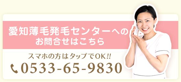 電話番号:0533659830